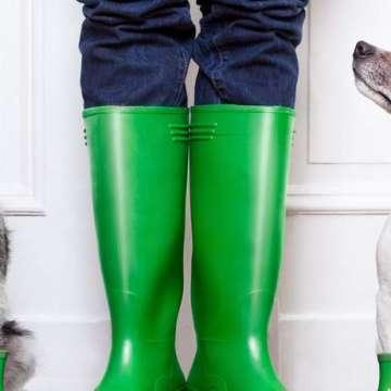 hundehaftpflichtversicherung-test
