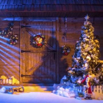 Weihnachten - Aufstellen eines Tannenbaums